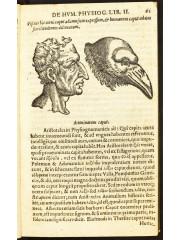 De humana physiognomonia, 1618