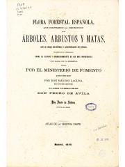 Flora Forestal Española. Atlas, 1884 -1890