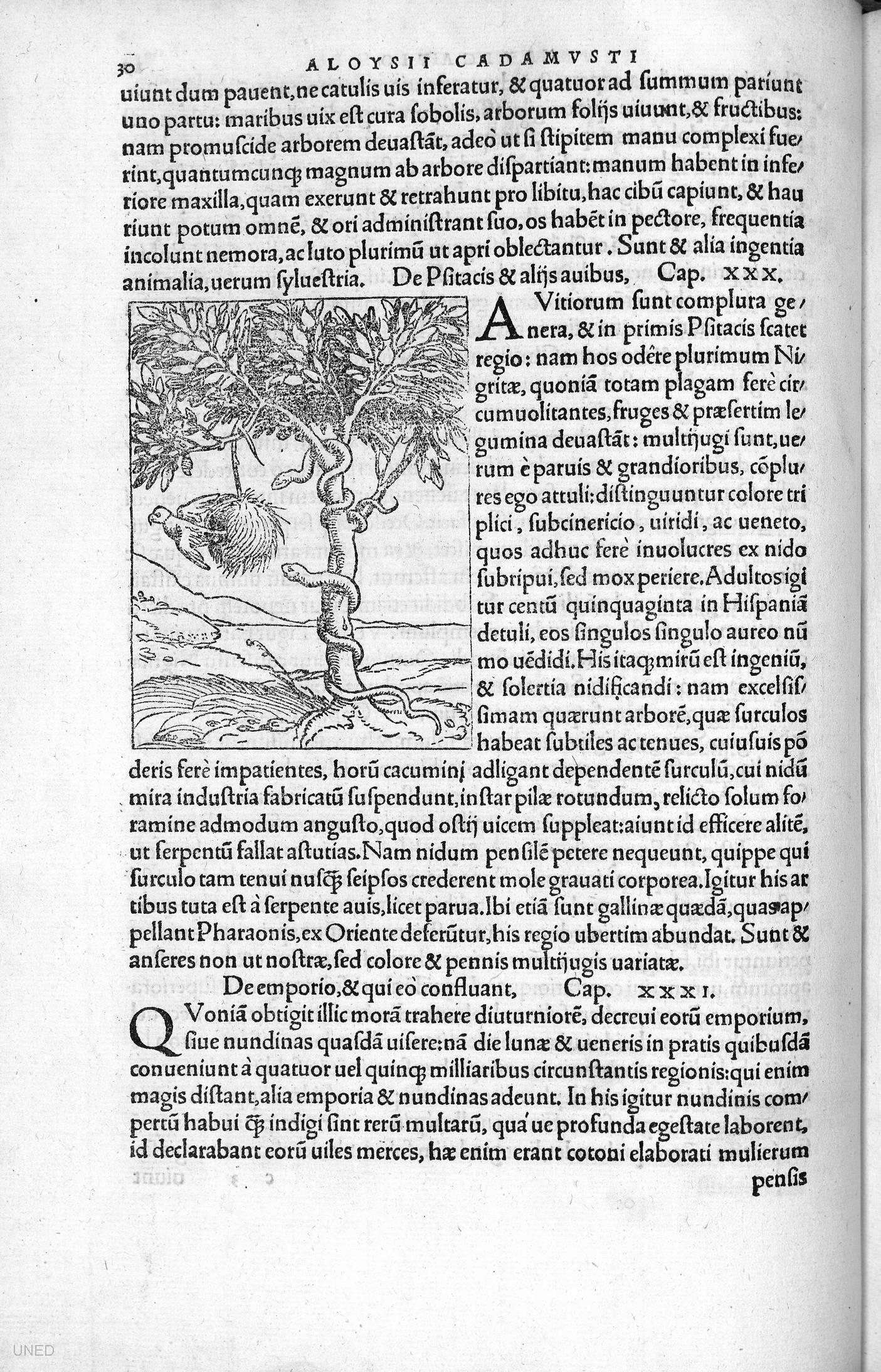 Nouus orbis regionum ac insularum veteribus incognitarum…, 1537